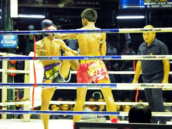 boks tajski nauka warszawa